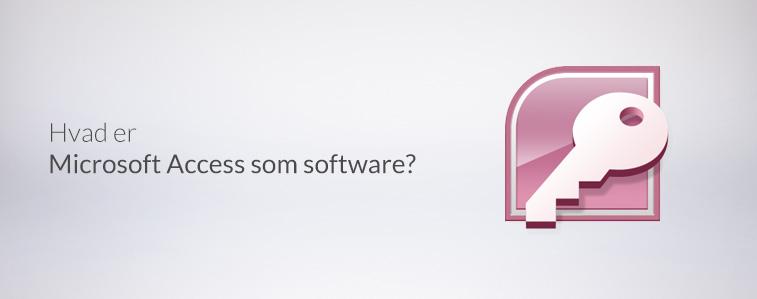 Hvad er Microsoft Access som software?